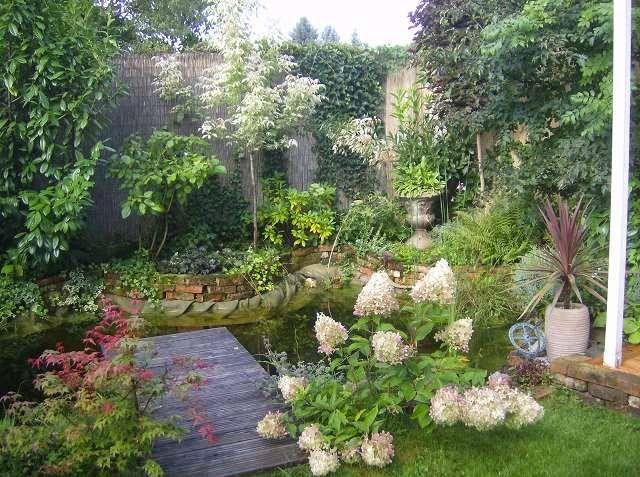Rispenhortensie Garten