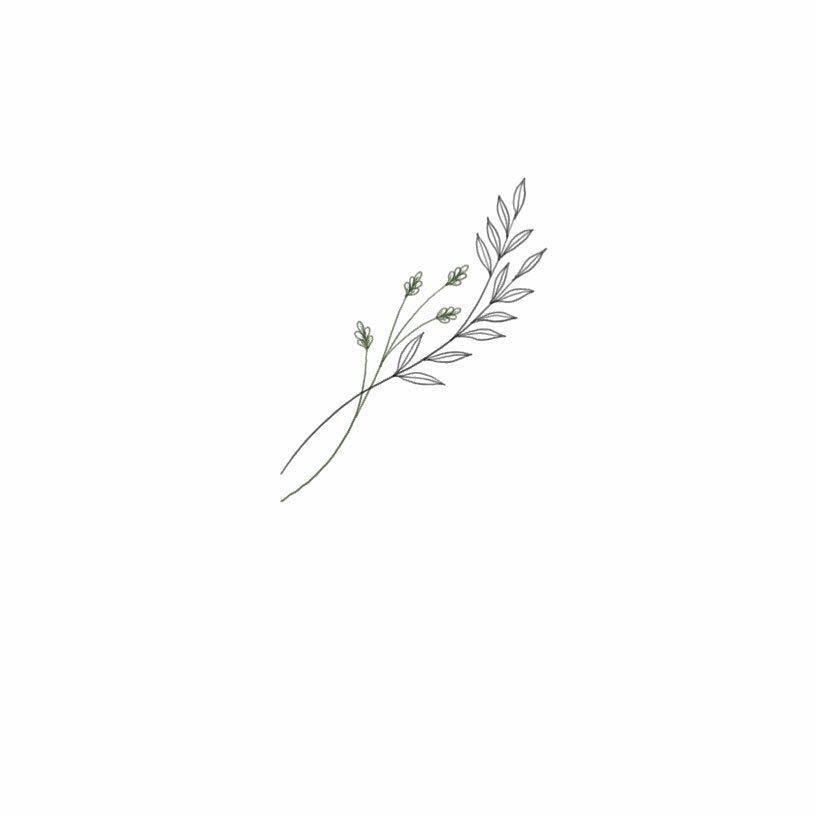 "Photo of mariia on Instagram: ""#365daysofsketching  day 260 . . . . . . #art #draw #graphic #sketch #sketchbookpro #nature #botanical #botanicaltattoo #tattoo #tattooing…"""
