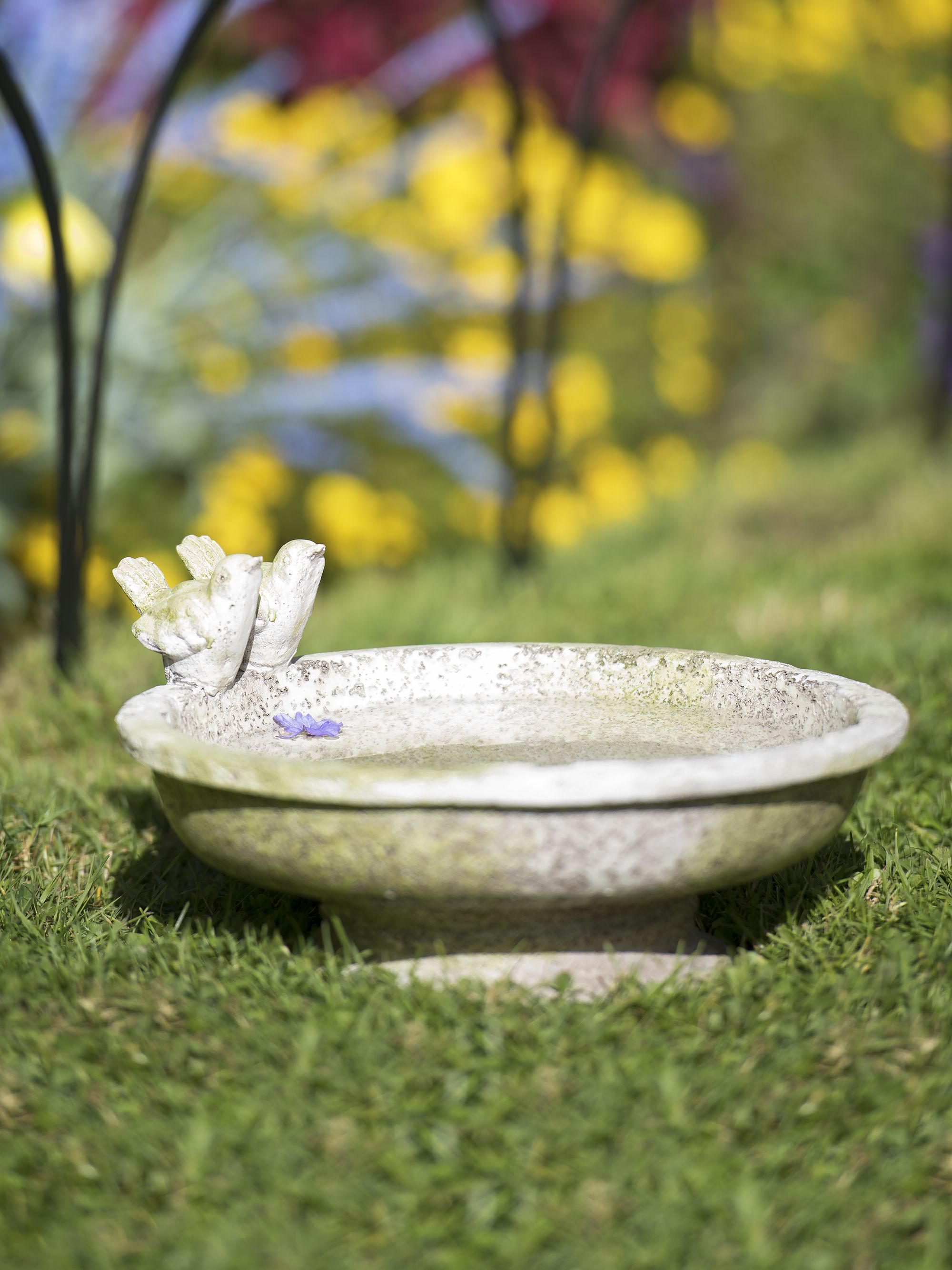Low-Profile Bird Bath Accents Deck or Garden | Patio decor ...