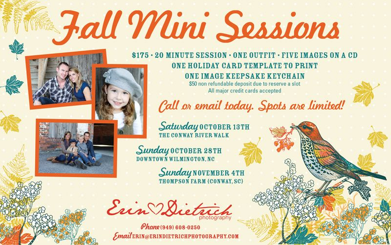 Photography mini session #flyer   #poster Photographer branding - fall flyer