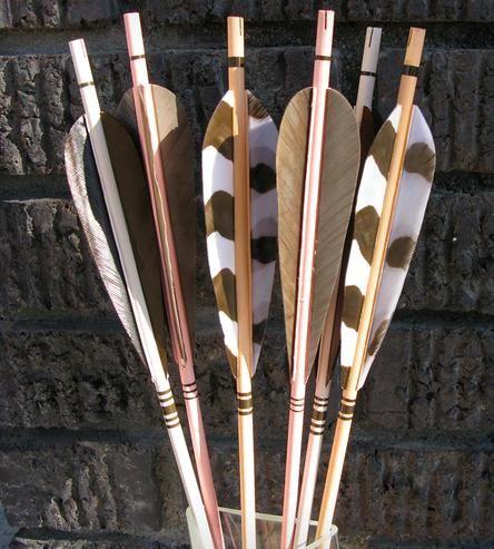 Safari Decorative Arrow Set