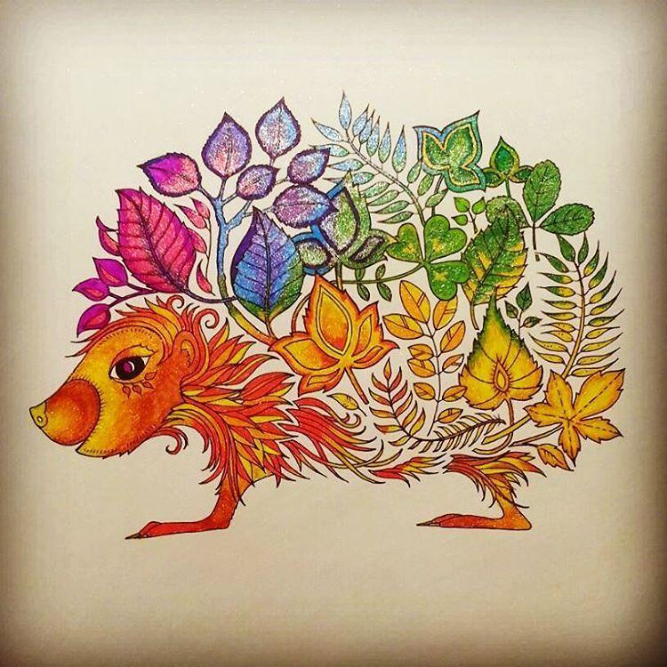 Anyutasoulnikitina On Instagram Rasskraskaantistress Dzhoannabesfor Enchanted Forest Coloring Book Enchanted Forest Coloring Johanna Basford Enchanted Forest
