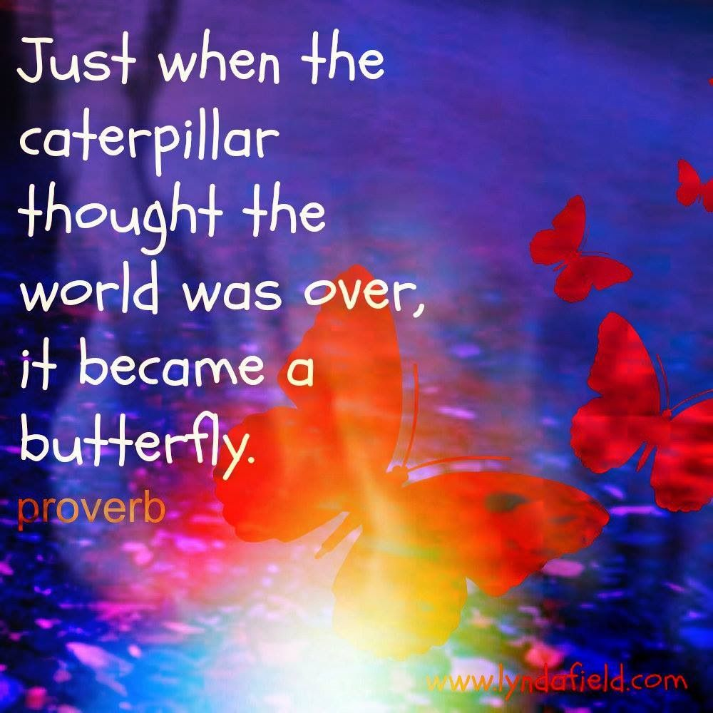 Butterfly Thoughts Positive Quotes Inspirational Quotes