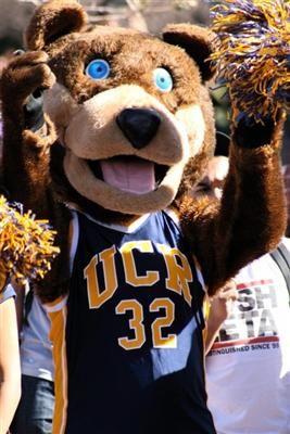 Uc Riverside Highlanders Mascot Scotty The Bear Mascot Bear Teddy Bear