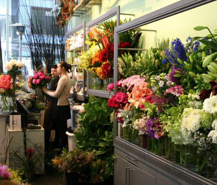 Balgowlah Florist Stocklands Centre Flowers For Everyone Flower Delivery Online Flower Delivery