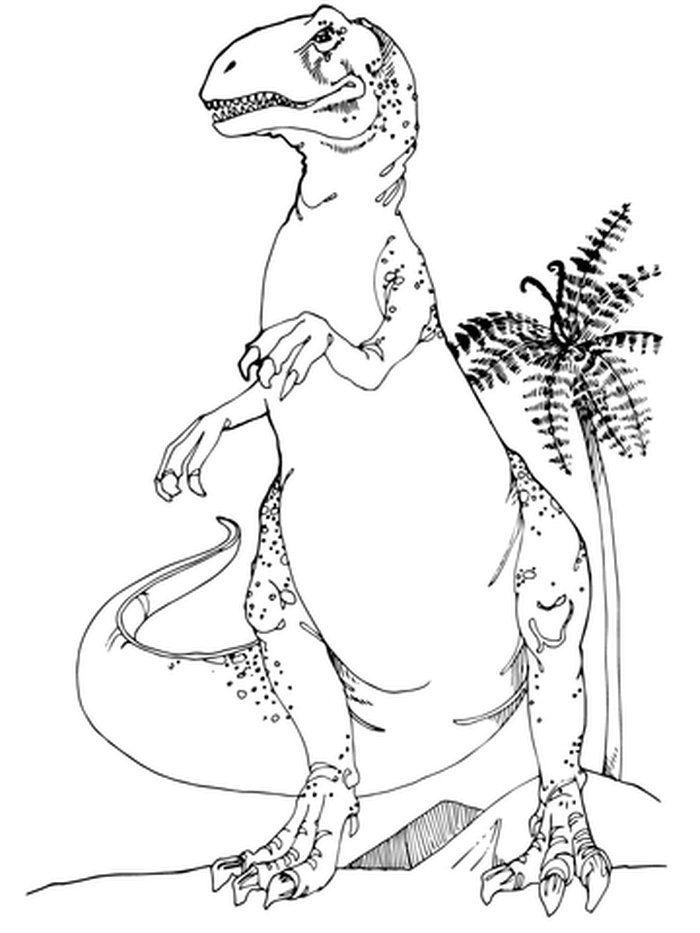 allosaurus printable dinosaur coloring pages dinosaur