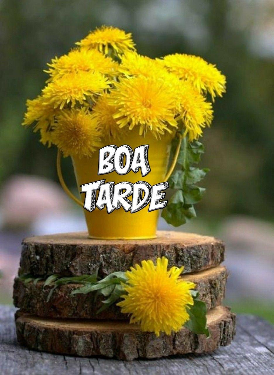 Boa Tarde Flores Com Carinho Flores Bonitas Flores Amarelas