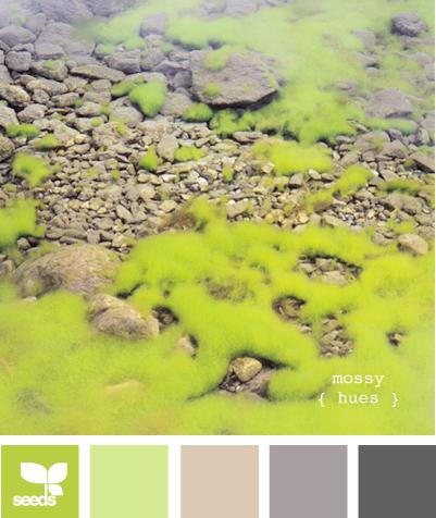Mossy hues