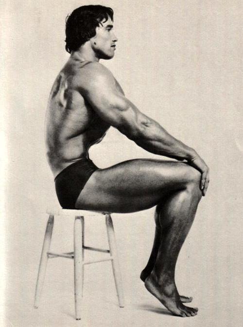 Arnold arnold