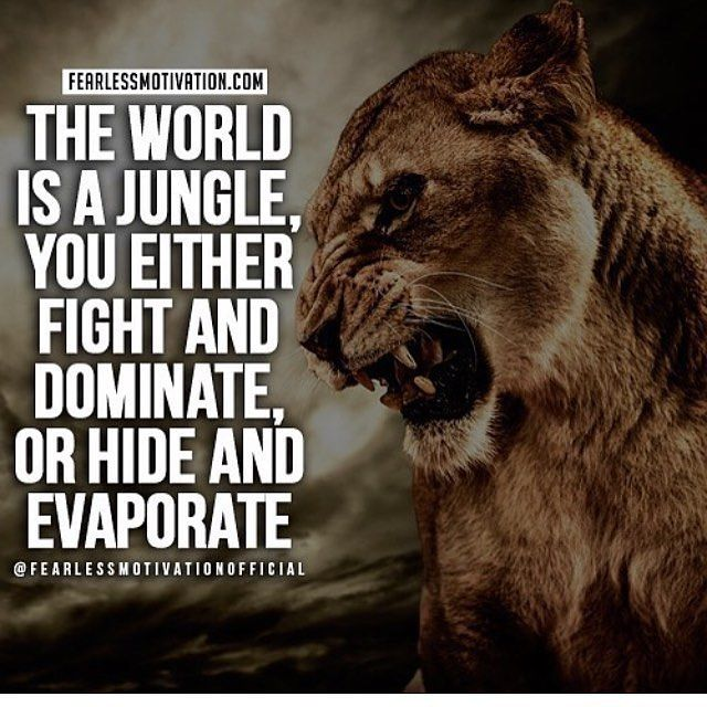 Great one by @fearlessmotivationofficial. Are you a fighter? Make sure you follo... #success. #quotes #rich #wealth #prosperity #cash to achieve #passion #dreams #goals #entrepreneur. #Get your #6figures #income #secret http://wealthyguru.com