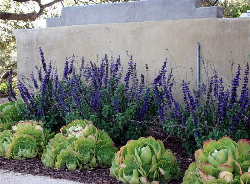 Inexpensive Landscaping Ideas to Beautify Your Yard   http   freshome com. 25  beautiful Cheap landscaping ideas ideas on Pinterest