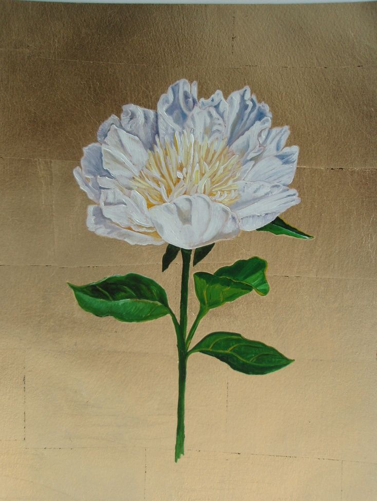 White Peony by Lorie Schackmann
