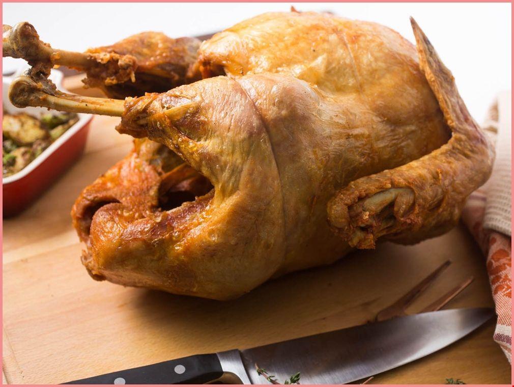 fried wild turkey