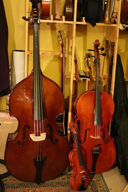 1 4 Bass Cello And Violin Violin Cello Violin Family