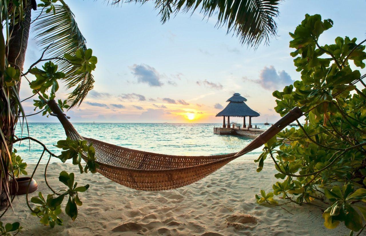 Tropics Sunrises and sunsets Sea Sand Beach Nature