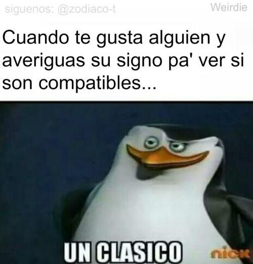 Zodiaco Tumblr Memes Memes Graciosos Memes Clasicos