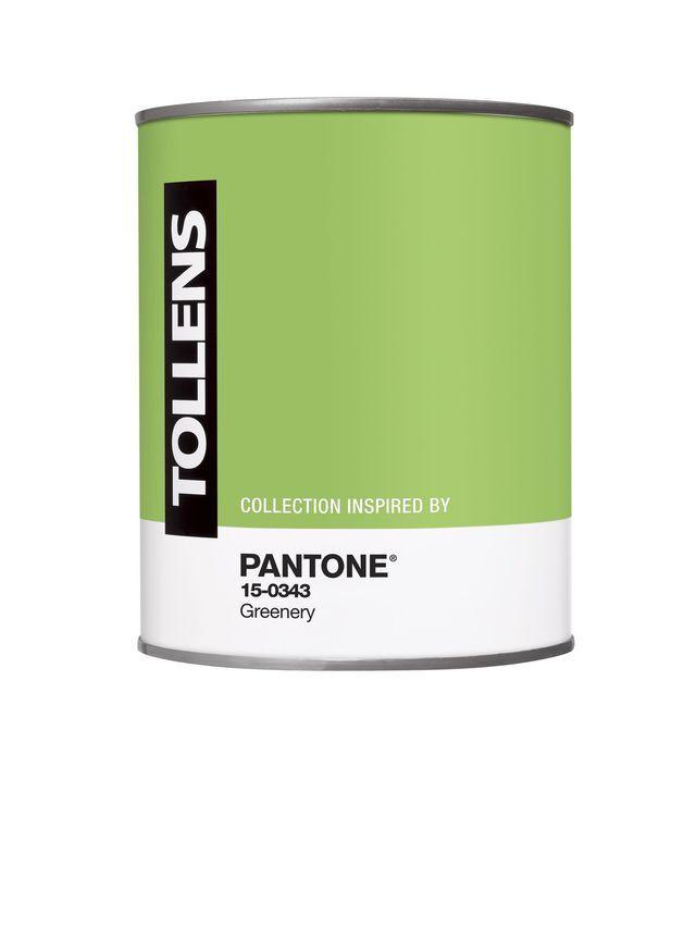 couleur pantone tollens 2017 vert greenery couleur pantone pantone et c t maison. Black Bedroom Furniture Sets. Home Design Ideas