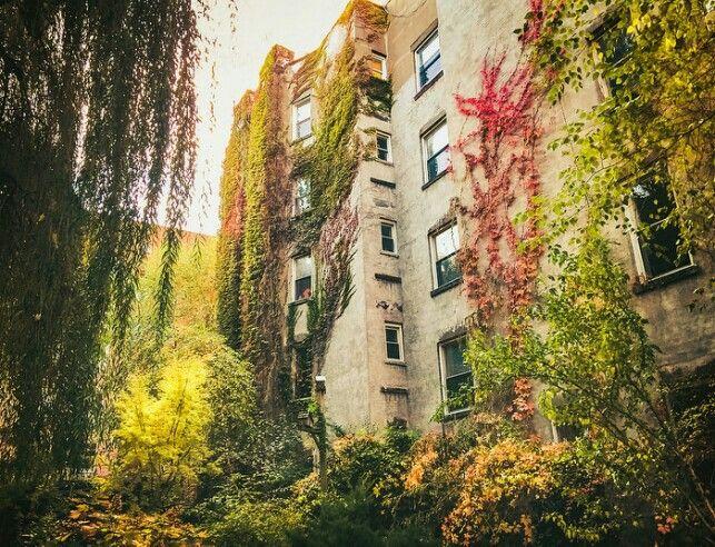 New York Autumn