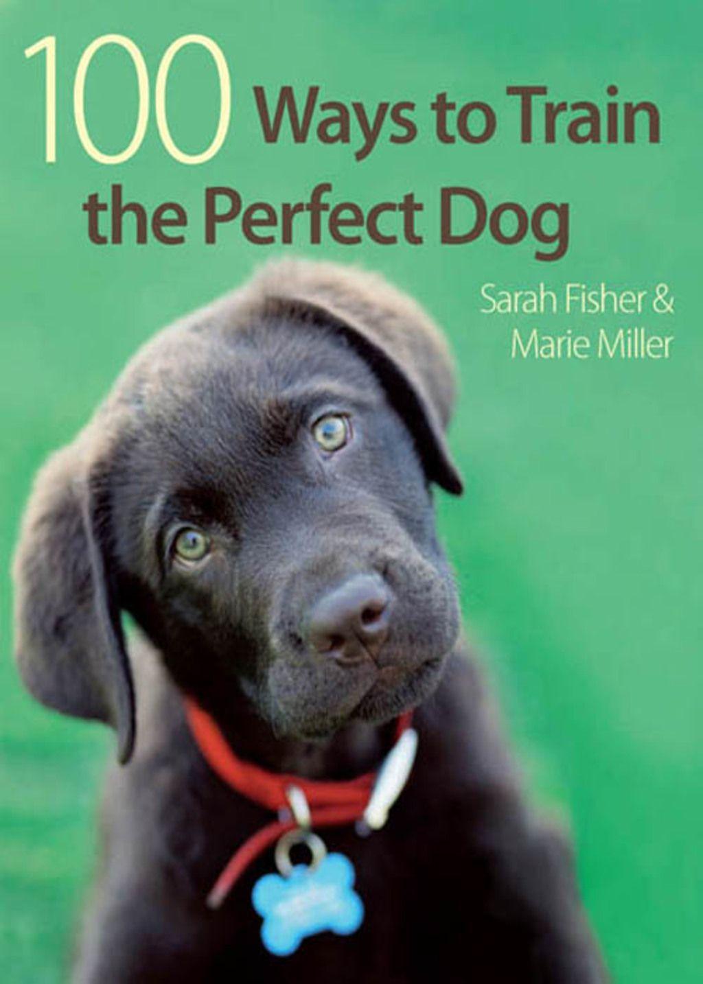 Photo of 100 maneras de entrenar al perro perfecto (eBook)