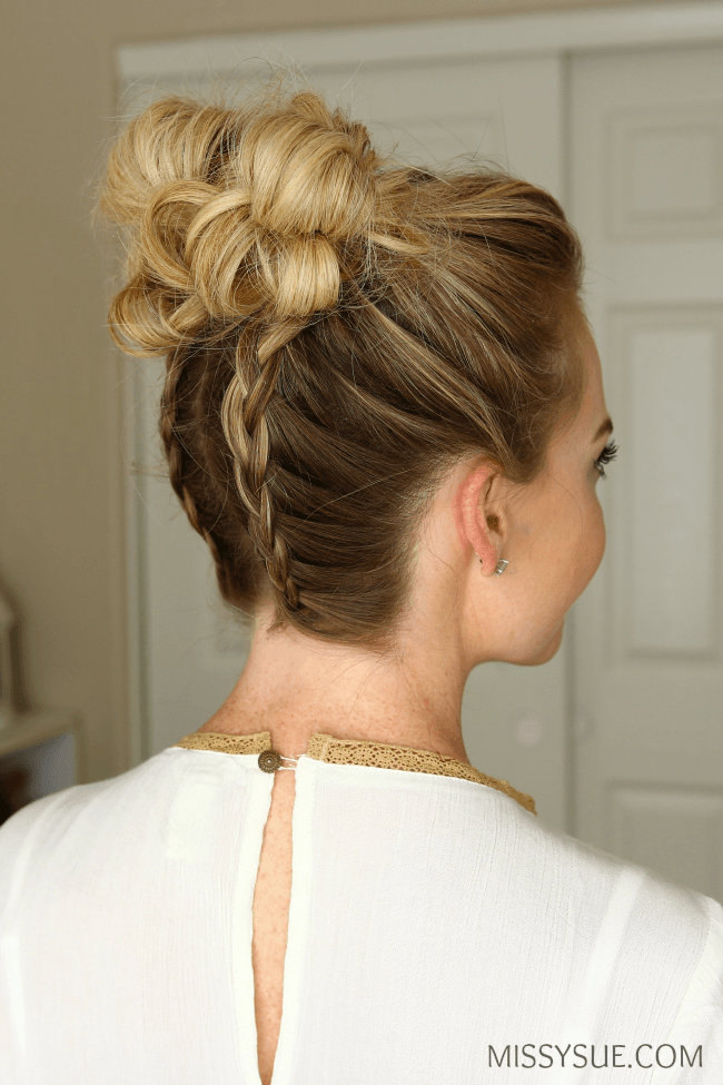 Buns Hairstyles Double Dutch Braids High Buns  High Bun Hairstyles High Bun And