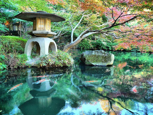 Tokyo botanical Gardens