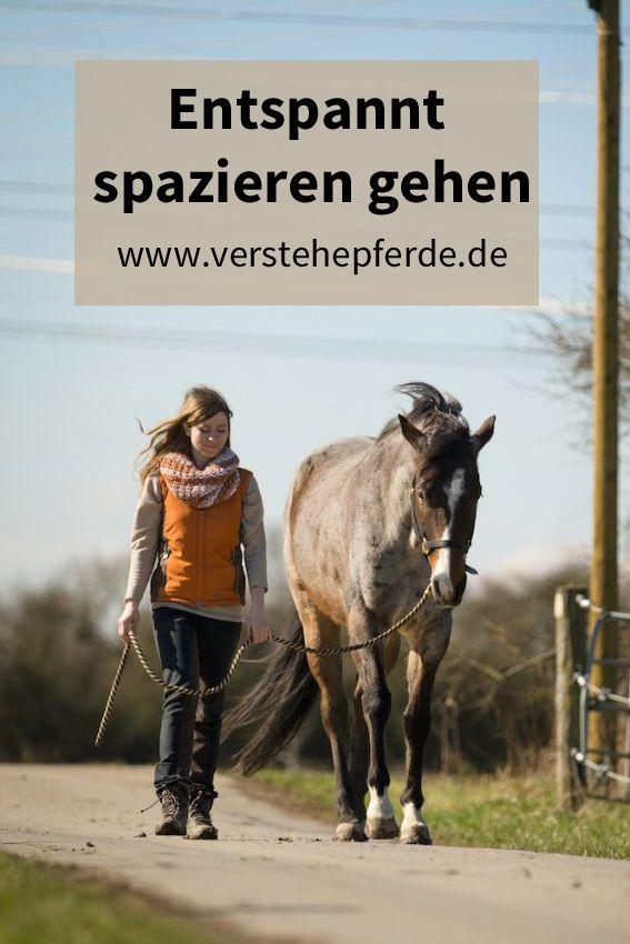 Spazieren mit Pferd