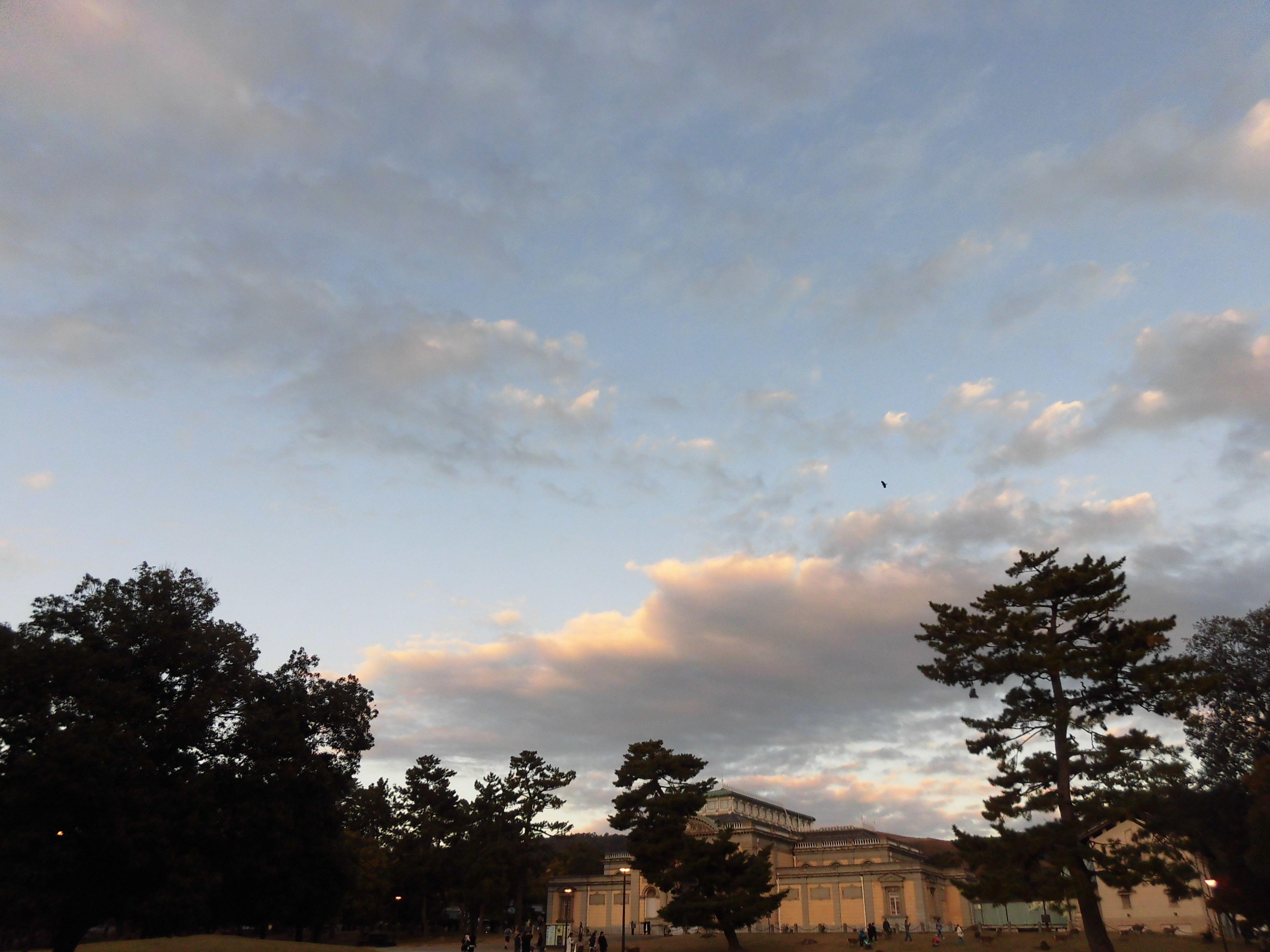 奈良公園 奈良国立博物館 2019.11.14