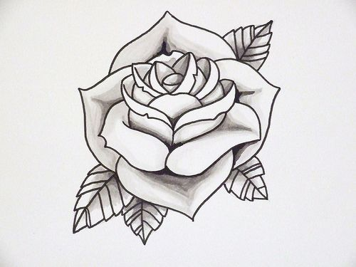 Line Drawing Of Rose Plant : Rose outline art on the skin tattoos