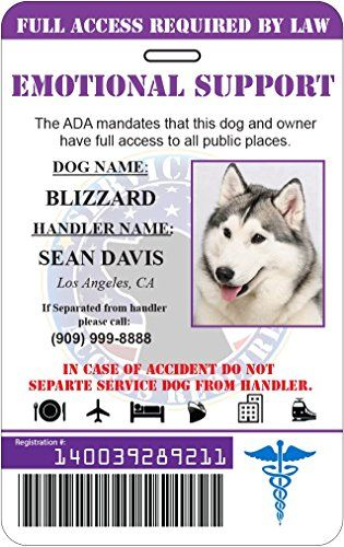 Emotional Support Dog Holographic Custom Id Card Purple Pet Supplies Emotional Support Dog Service Dogs Emotional Support