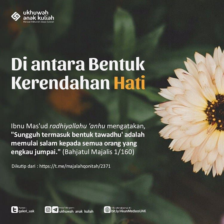 Ukhuwah Anak Kuliah On Instagram Diantara Bentuk Kerendahan Hati Kutipan Agama Islamic Quotes Kutipan