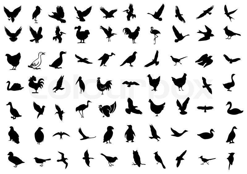 Vogel Symbol