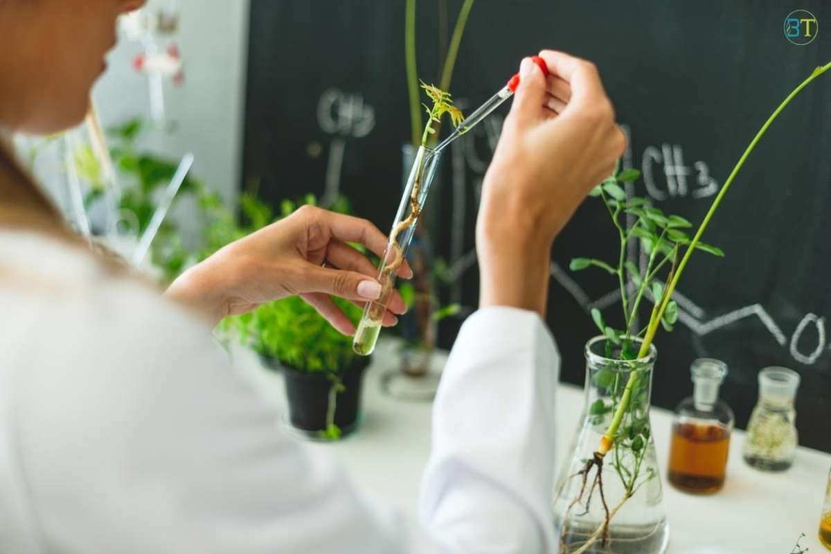 INST Mohali Biotechnology/ Biochemistry Research Fellow Job