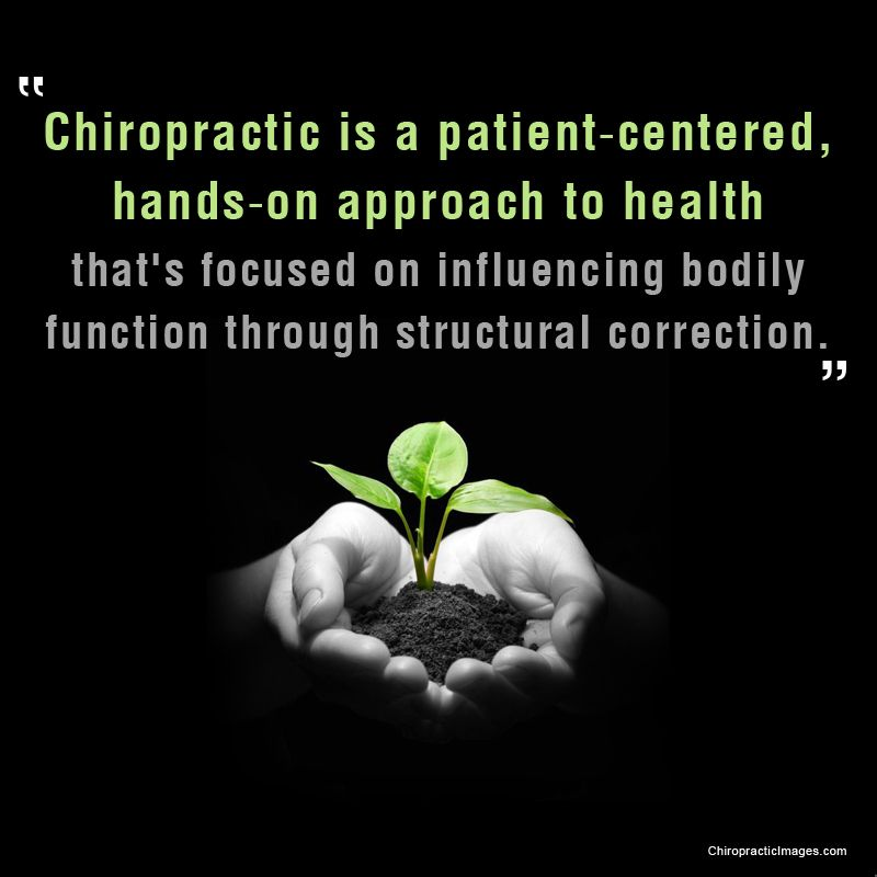Like this professional graphic grab 364 more chiropractic