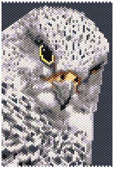 Bird falcon cross stitch.