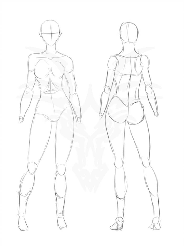 Featured image of post Human Body Sketch Reference