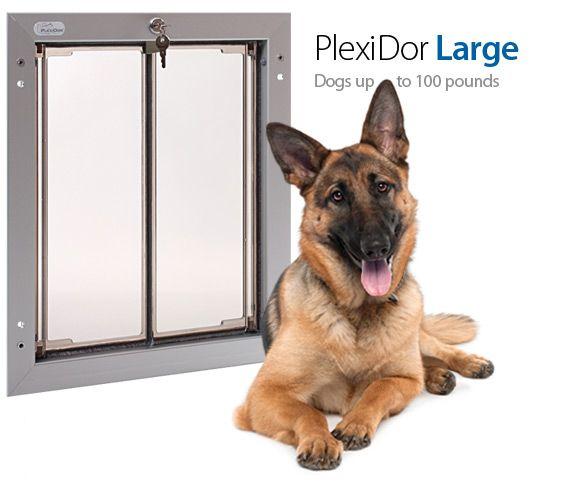 ... Plexidor Wall Series Largest Dog Pet Door And Doors ...  sc 1 st  Doors Design Modern & Dog Doors For Walls Images - doors design modern