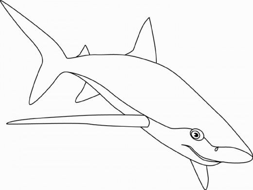 shark coloring pages for older kids | Pictures of Sharks for Kids to Color In | Shark coloring ...