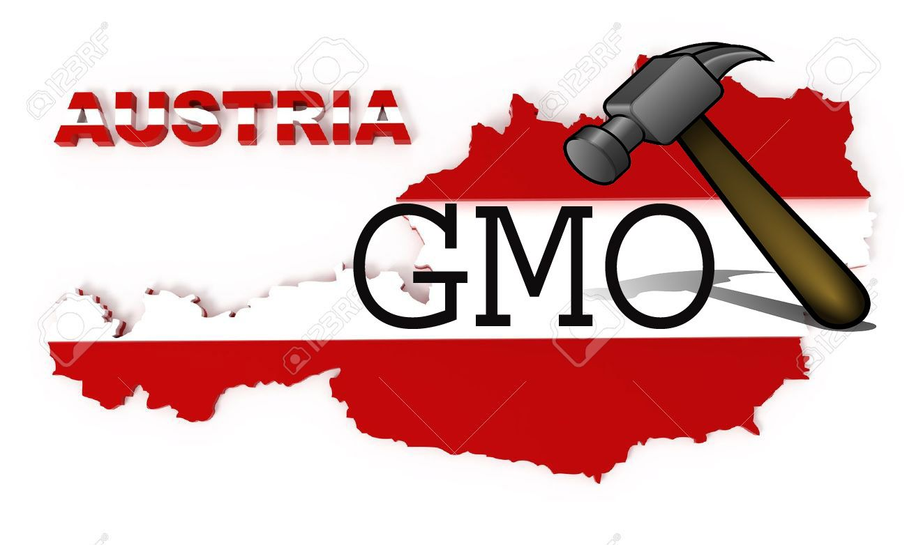 World S Largest Spice Company Is Officially Going Organic And Gmo Free Gmo Free Gmos Gmo