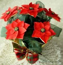 Poinsettia - Noël