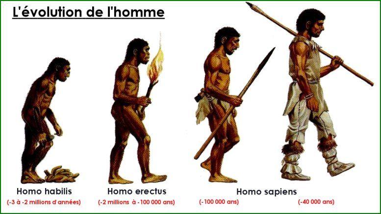 Epingle Sur La Prehistoire