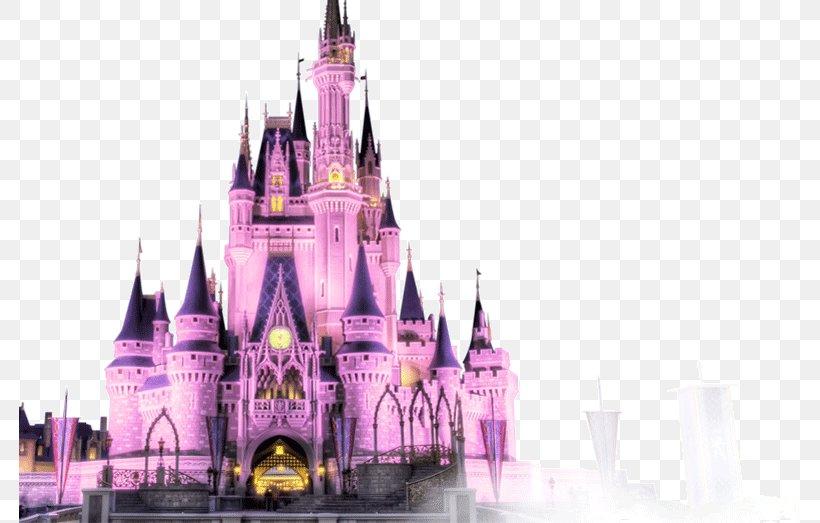 Magic Kingdom Sleeping Beauty Castle Cinderella Castle The Sleeping Beauty Castle Cinderella Castle Magic Kingdom