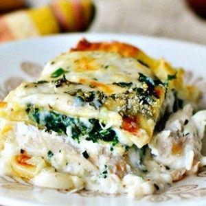 White cheese #chicken lasagna #recipe | Food & Recipes ...