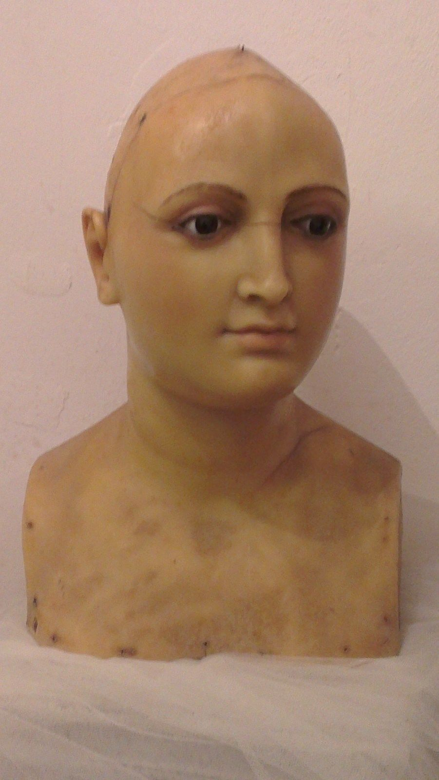 Great Antique Wax Mannequin Head Bust Gl Eyes 1900 S Rare Ebay