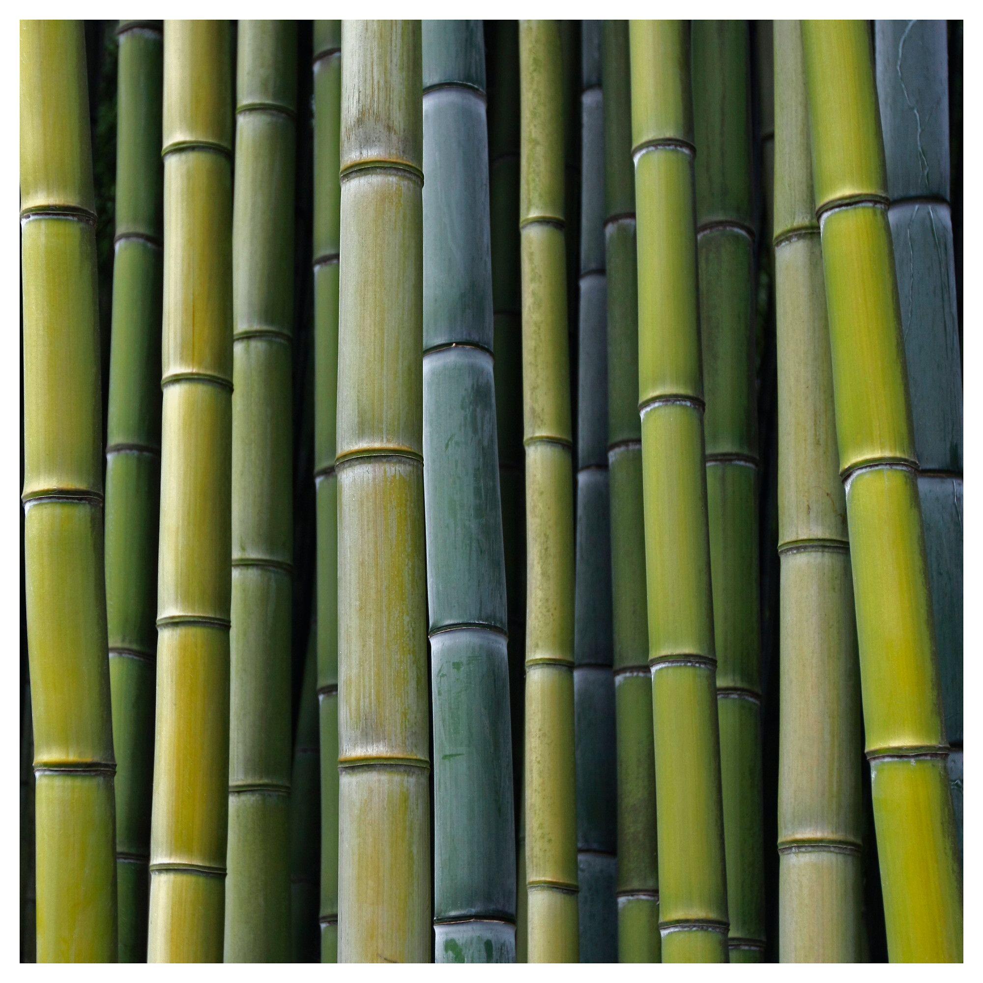 sch ne intensive farben katalg s 159 pj tteryd bild meine eselsohren im ikea katalog 2012. Black Bedroom Furniture Sets. Home Design Ideas