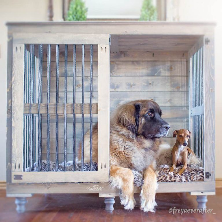 Beautiful Indoor Wooden Dog Kennels And Dog Crate Furniture Big