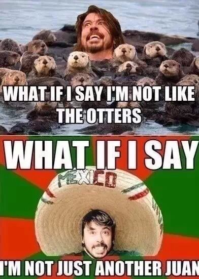 626f845f8c52df3974e3652691834d24 puns again dave grohl, horrible puns and foo fighters,Foo Fighters Meme