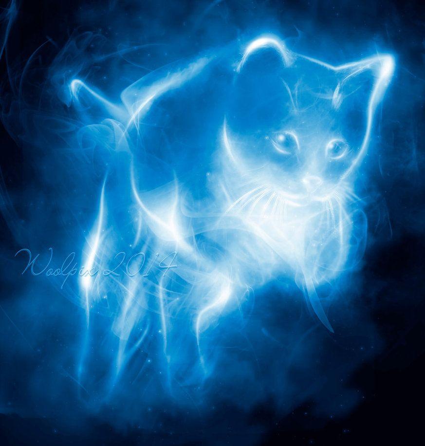 Patronus Cat 2 Harry Potter Cat Mythical Creatures Art Harry Potter Patronus