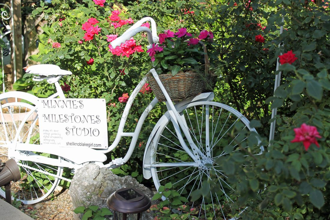 Vintage Bicycle Spray Painted All White And Set In A Rose 400 x 300