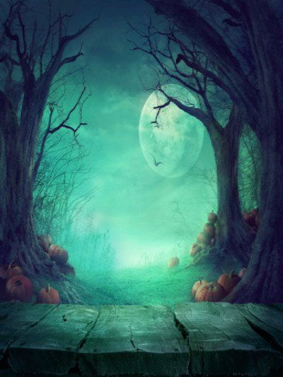 Kate Photography Fantastic Halloween Backdrops Forest Night Moon - halloween backdrop