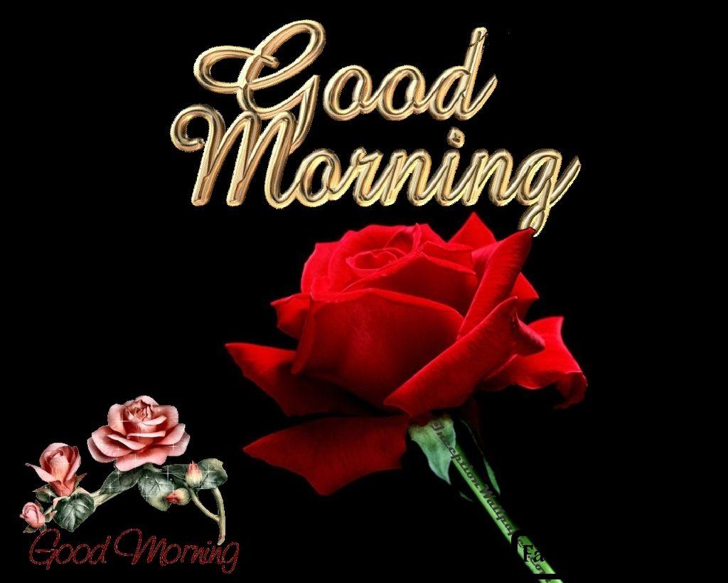 Amazing Wallpaper Logo Rajput - 6271022cd8222db715e88d308edf2df7  You Should Have_40853.jpg